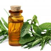 Профилактика простуды с эфирными маслами