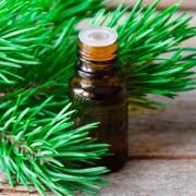 Хвойная ароматерапия: эфирные масла сосны, пихты и ели против ОРЗ